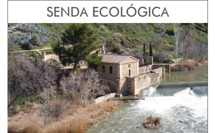 Visitas Guiadas Toledo - Ruta por la Senda Ecológica